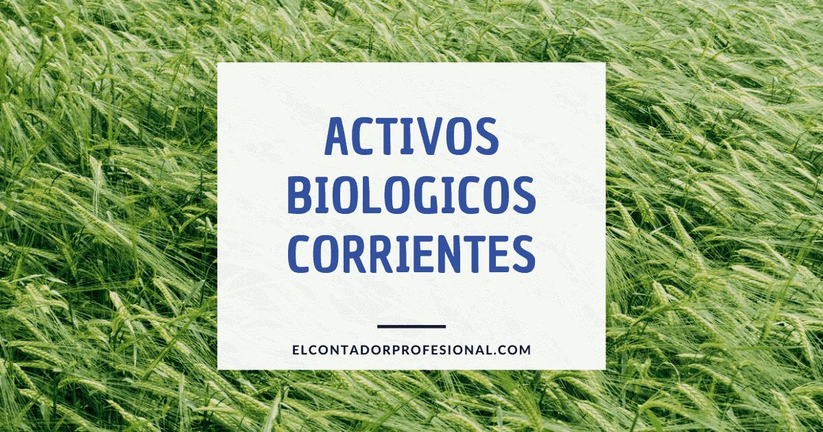 activos biologicos corrientes