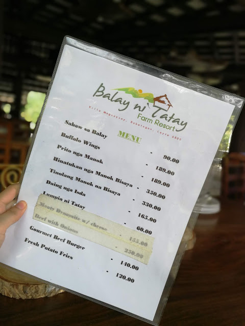 balay ni tatay farm resort babatngon leyte