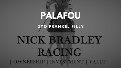 Another 2YO Frankel Filly for Nick Bradley Racing