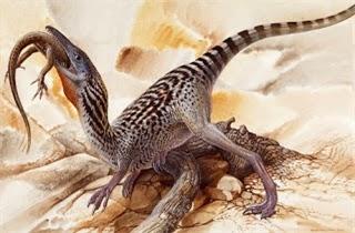 Foto Compsognathus