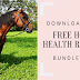 5 Things You Can Teach your Horse For Respect