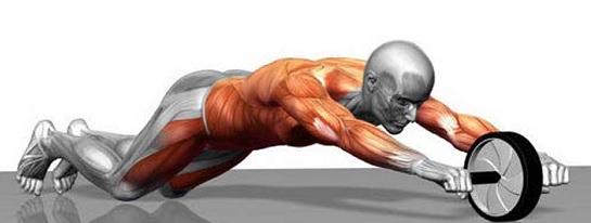 Dụng cụ tập cơ bụng cho nam giới