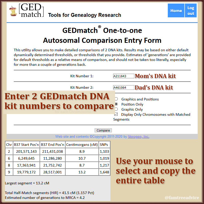 GEDmatch showed my parents may be related. But how?