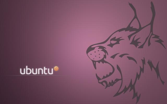 lucid lynx ubuntu