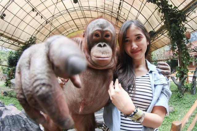 7 Kebun Fauna Terbaik di Indonesia