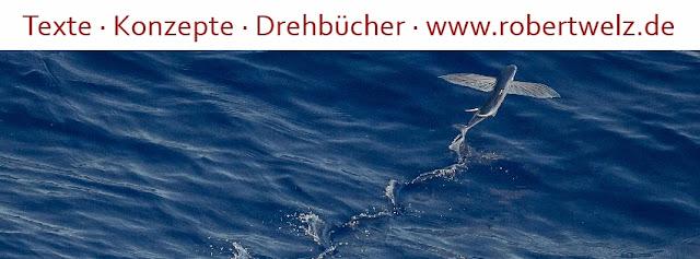 Werbetexter TV-Autor Köln Pulheim Werbung Marketing Texte Drehbücher B2B B2C PR