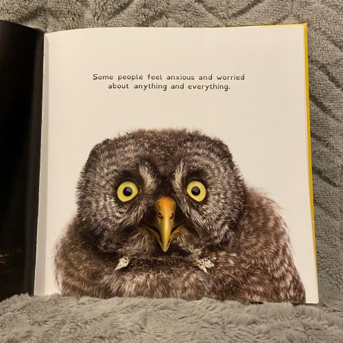 Owl with text some people feel anxious about any and everything
