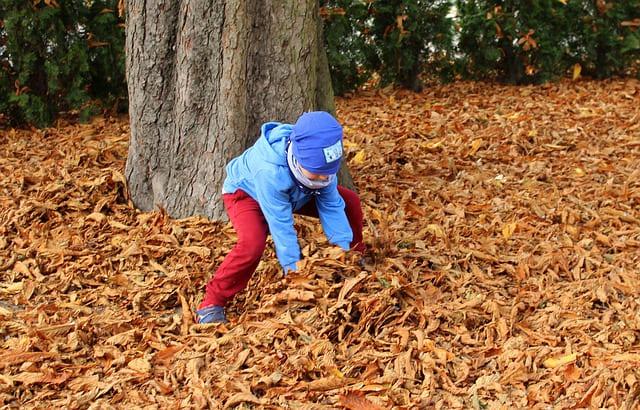 Manfaat Membiasakan Anak Mandiri Sejak Dini