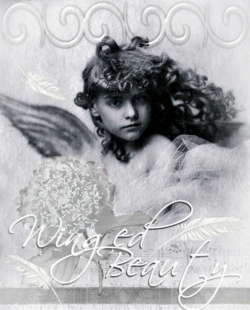 Winged Beauty Digital Art