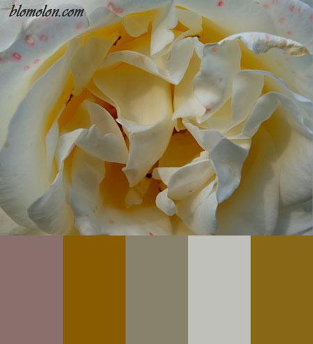 paletas-de-colores-mes-de-diciembre-1