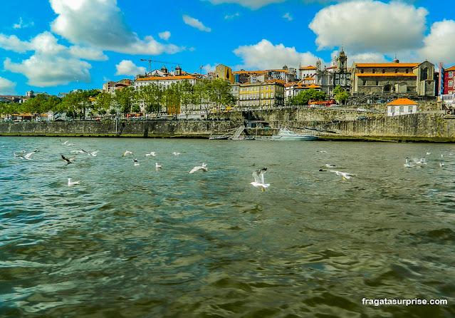 Passeio de barco pelo Rio Douro, Porto, Portugal