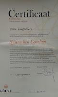 certificaat systemisch coachen vidarte