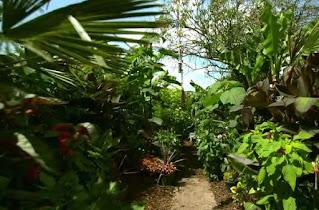 garden in charlbury