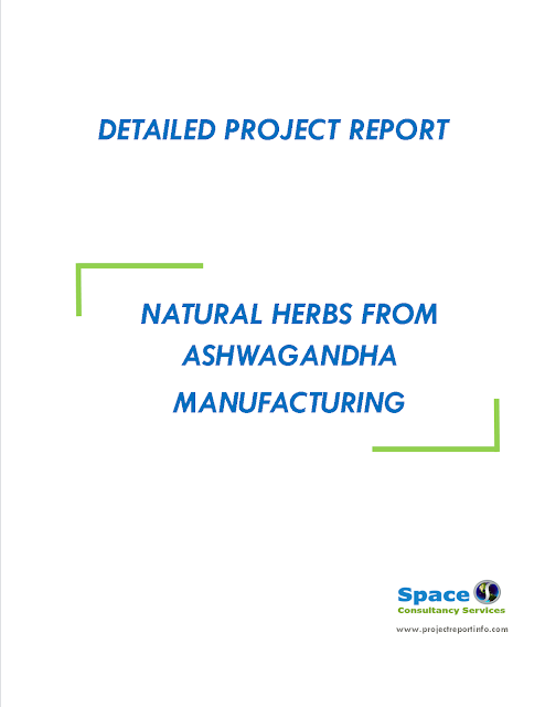 Project Report on Natural Herbs from Ashwagandha Manufacturing