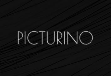 Picturino Brand Logo