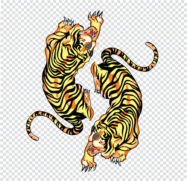 illustrator design exercises