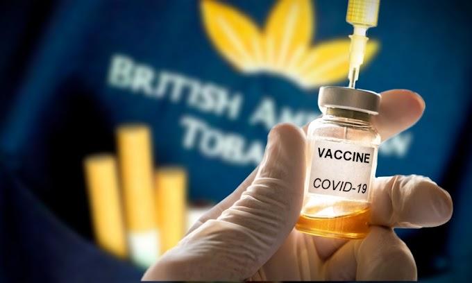 Una vacuna logra neutralizar el coronavirus en ratones