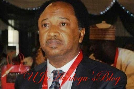 EFCC Operatives Invade Shehu Sani's Abuja Residence