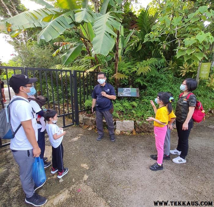 The Habitat Penang Hill Kancil Walk Review