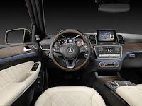 2017 Mercedes GLS 26