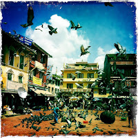 flying birds in boudhanath