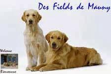 http://www.fieldsdemauny.fr/