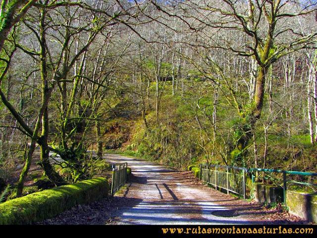 Ruta Pico Vízcares: Inicio de ruta en el área recreativa de la Pesanca