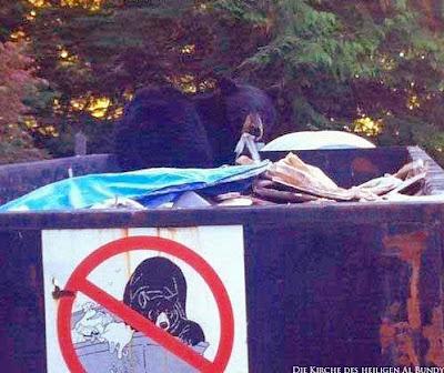Bär in Müllcontainer - witzige Tierbilder Verbotsschild