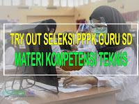 Try Out PPPK Guru SD Kompetensi Teknis Tahap 2 Tahun 2021