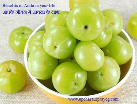 आपके Life-जीवन में Amla-आंवला के Benefits-लाभ