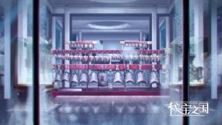 El anime Mibao zhi guo The country of rare treasure ending