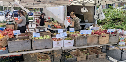 Bins of apples with masked vendors