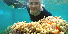 Snorkling Wisata Pahawang