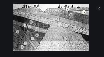 soal dan jawaban ilmu batuan jurusan geologi pertambangan berbasis AKM
