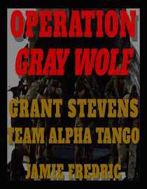 OPERATION GRAY WOLF - #14 in Grant Stevens Series - Underway!  Thanks for your patience!