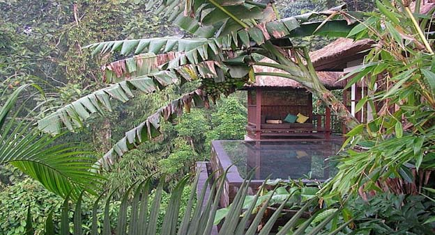 The exclusive hotel was particularly constructed for you to take pleasure in the up-to-the-minute extravagant boutique hotel, which is located in Ubud, the most beautiful organic sensation.