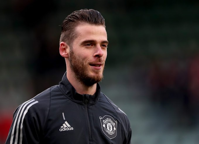 FRIENDS REUNITED Manchester United goalkeeper David de Gea in talks to buy Spanish side Elche