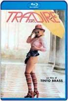 Trasgredire (2000) HD 720p Subtitulados