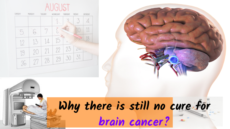 Why there is still no cure for brain cancer?