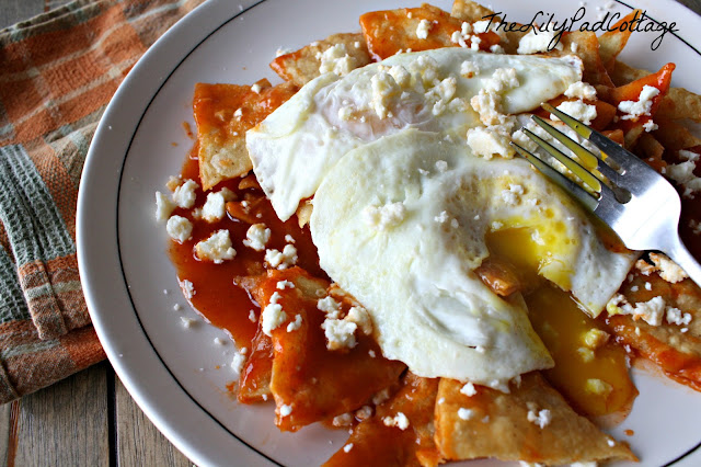 egg chilaquiles recipe