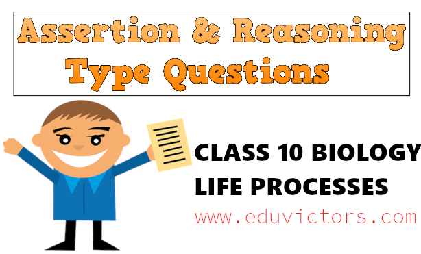 CBSE Papers, Questions, Answers, MCQ    : CBSE Class 10