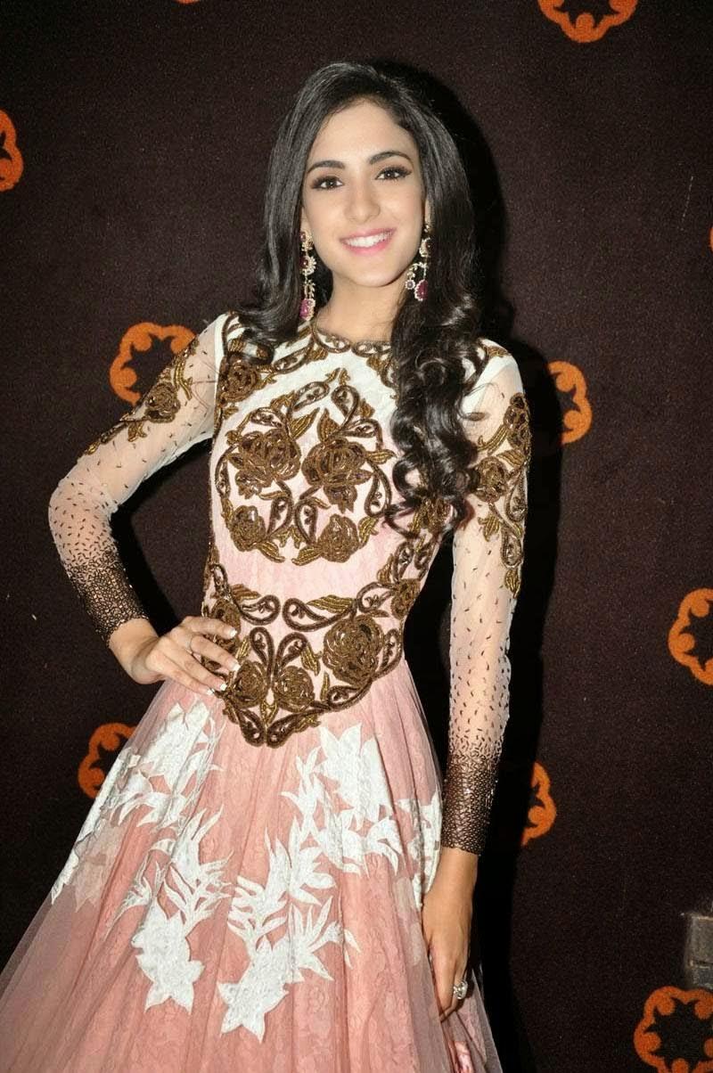 Kanika Kapoor Photos in Long Dress at Tippu Audio Release ...
