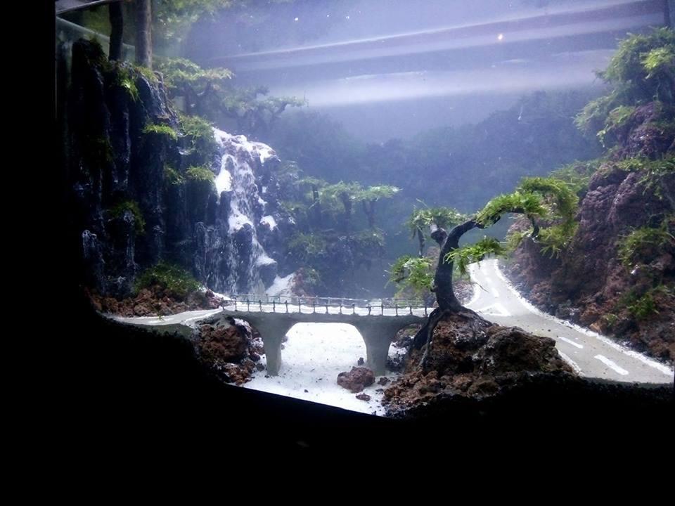 Một hồ thủy sinh suối thác ấn tượng với con đường độc đáo