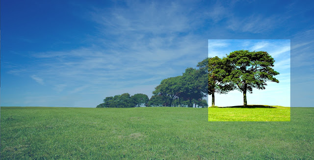 Sustainable and Ethical Investing - Why Aren't Investors Doing More?