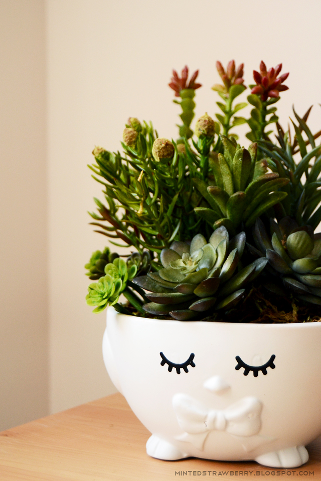 cute plant pot for spring
