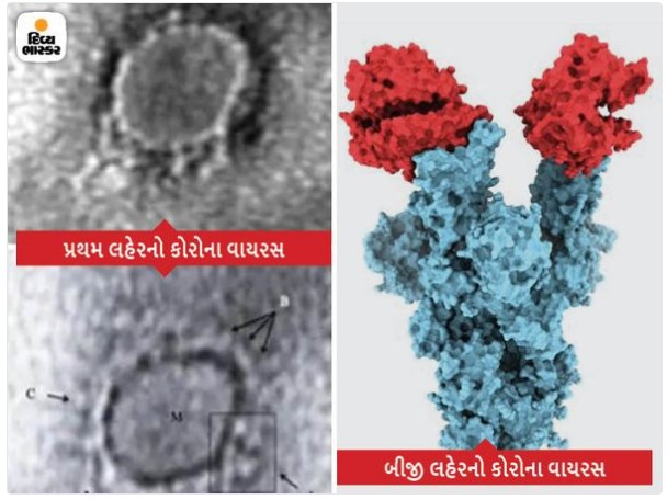 New Picture of the virus: Corona variant of the second wave in India, UK-Canada looks like, for the first time.