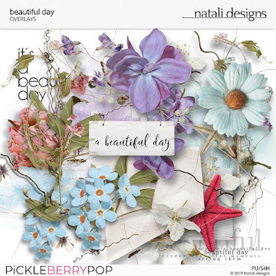 https://pickleberrypop.com/shop/Beautiful-Day-Overlays.html