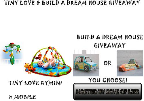 No Frill Reviews and Giveaways!: Tiny Love & Build a Dream