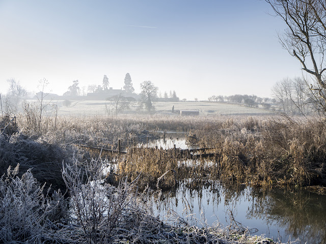 Misty View over Nature Reserve