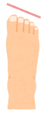 つま先の形のイラスト(エジプト型)